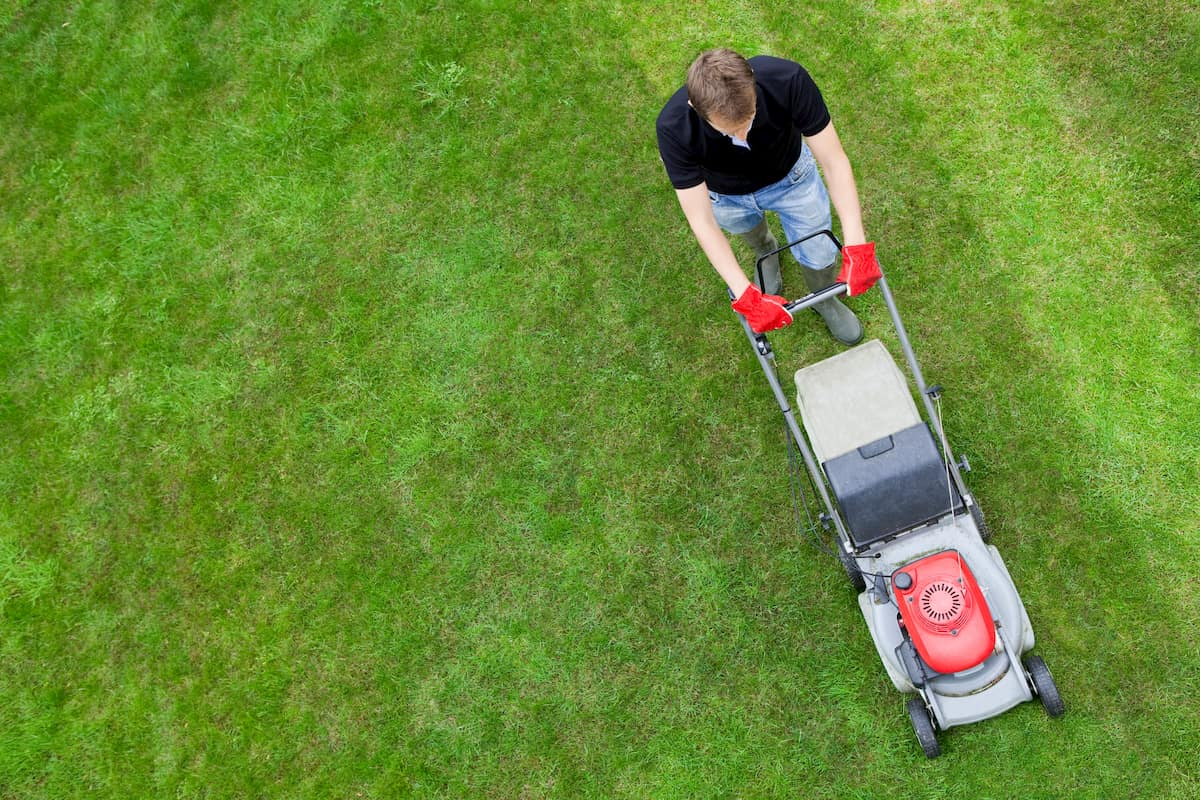 how to mow your grass in alternating striped lines