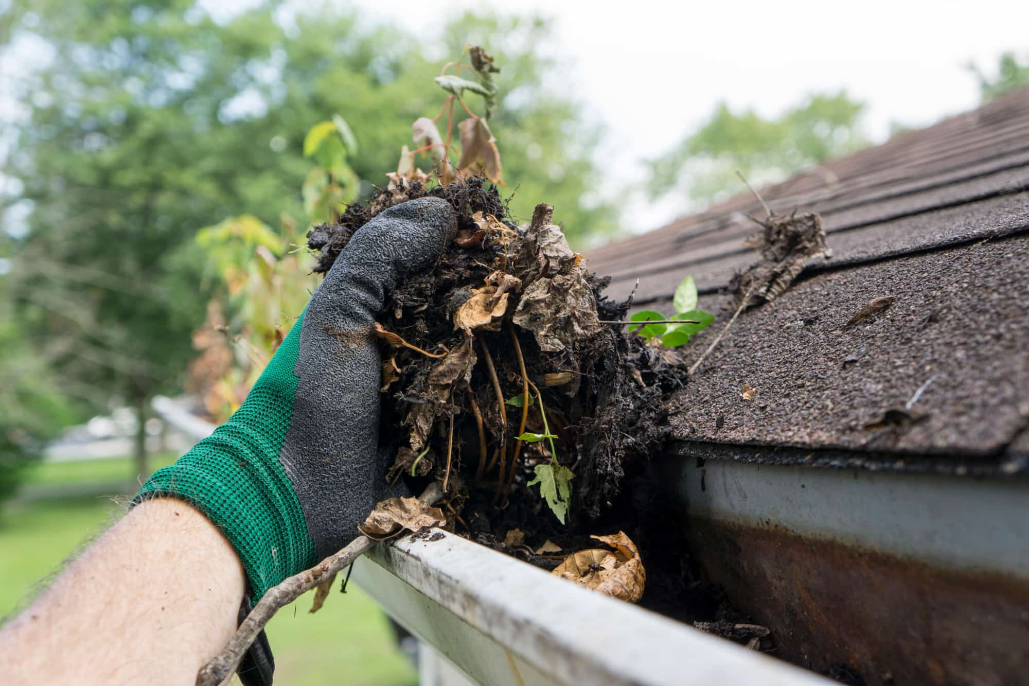 how to remove dirt from your gutters