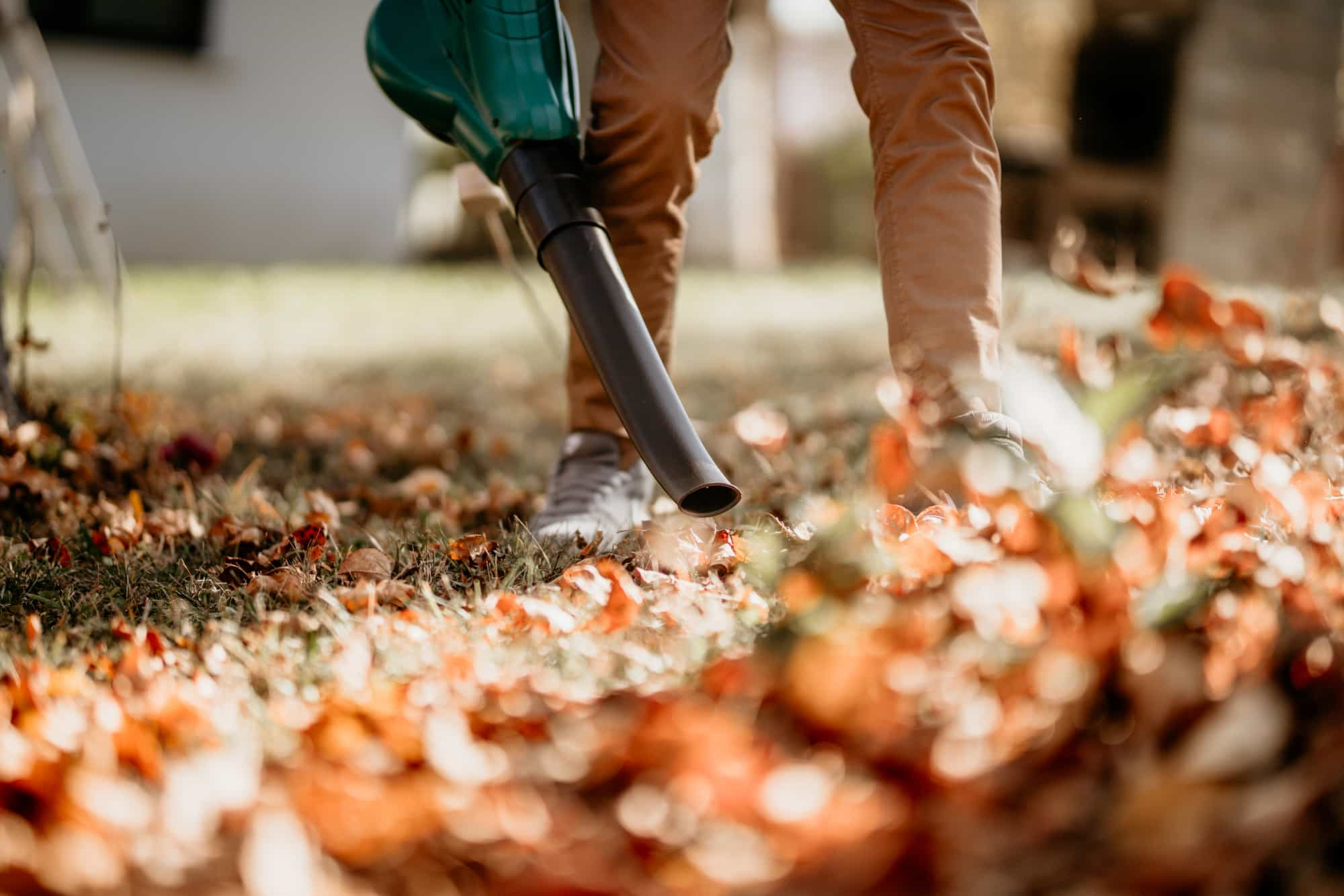 lawn pro using leaf blower for leaf cleanup