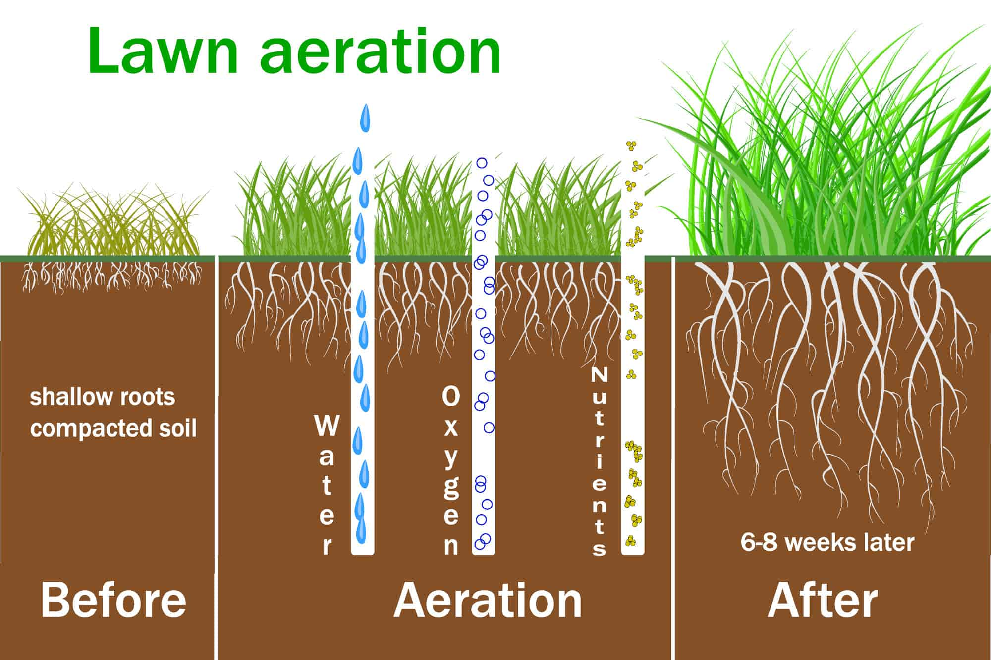 how does lawn aeration work