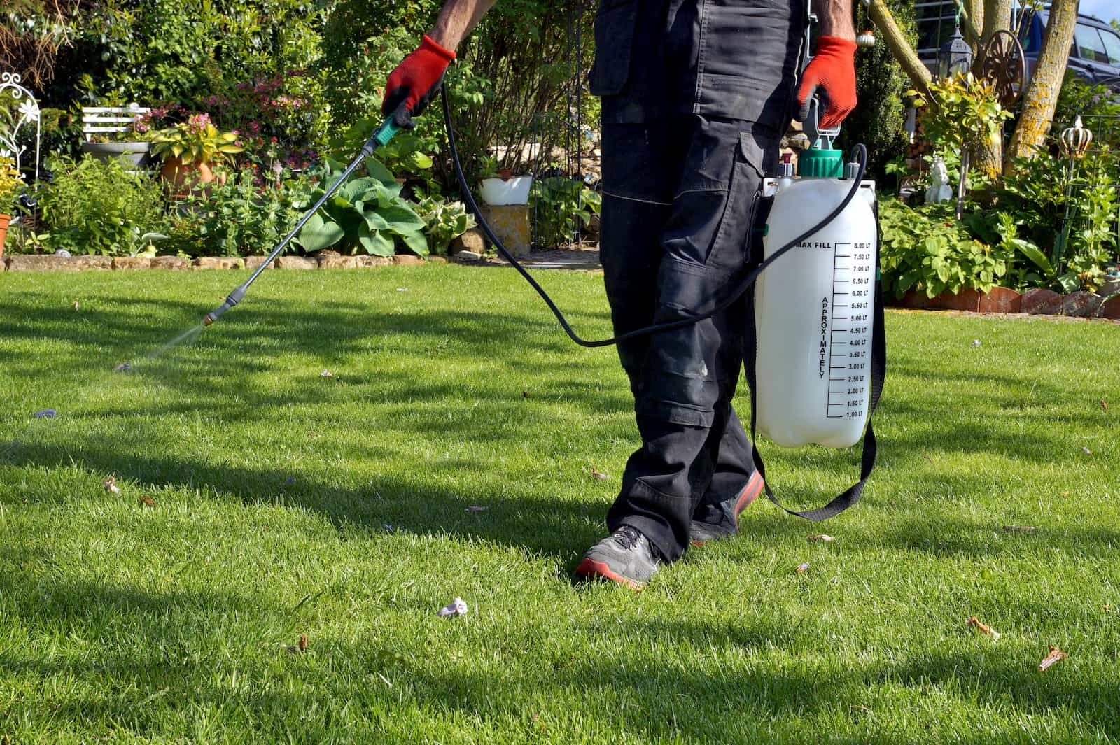 lawn care professional applying weed killer