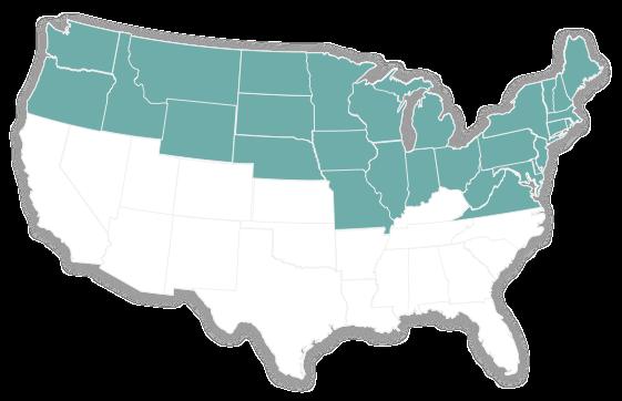 US - Cool-season grass types