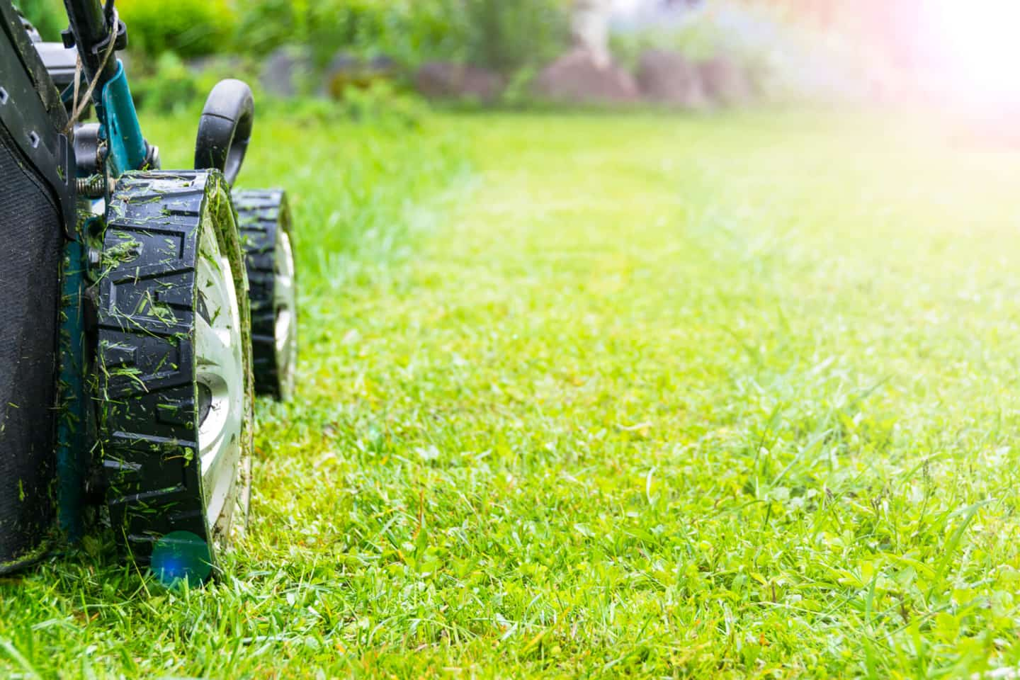 Lawn Care Services Near Me - Book now from $29 - Lawn Love