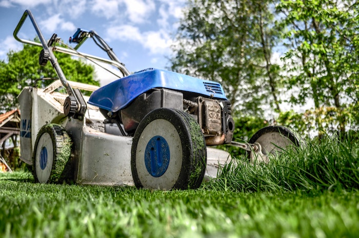 When To Stop Cutting Your Grass: A Guide