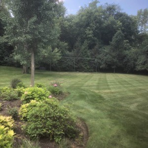 K & M Landscaping profile picture