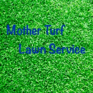 Mother Turf Lawn Service profile picture
