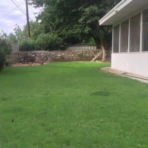 Reliable Lawn Maintenance profile picture