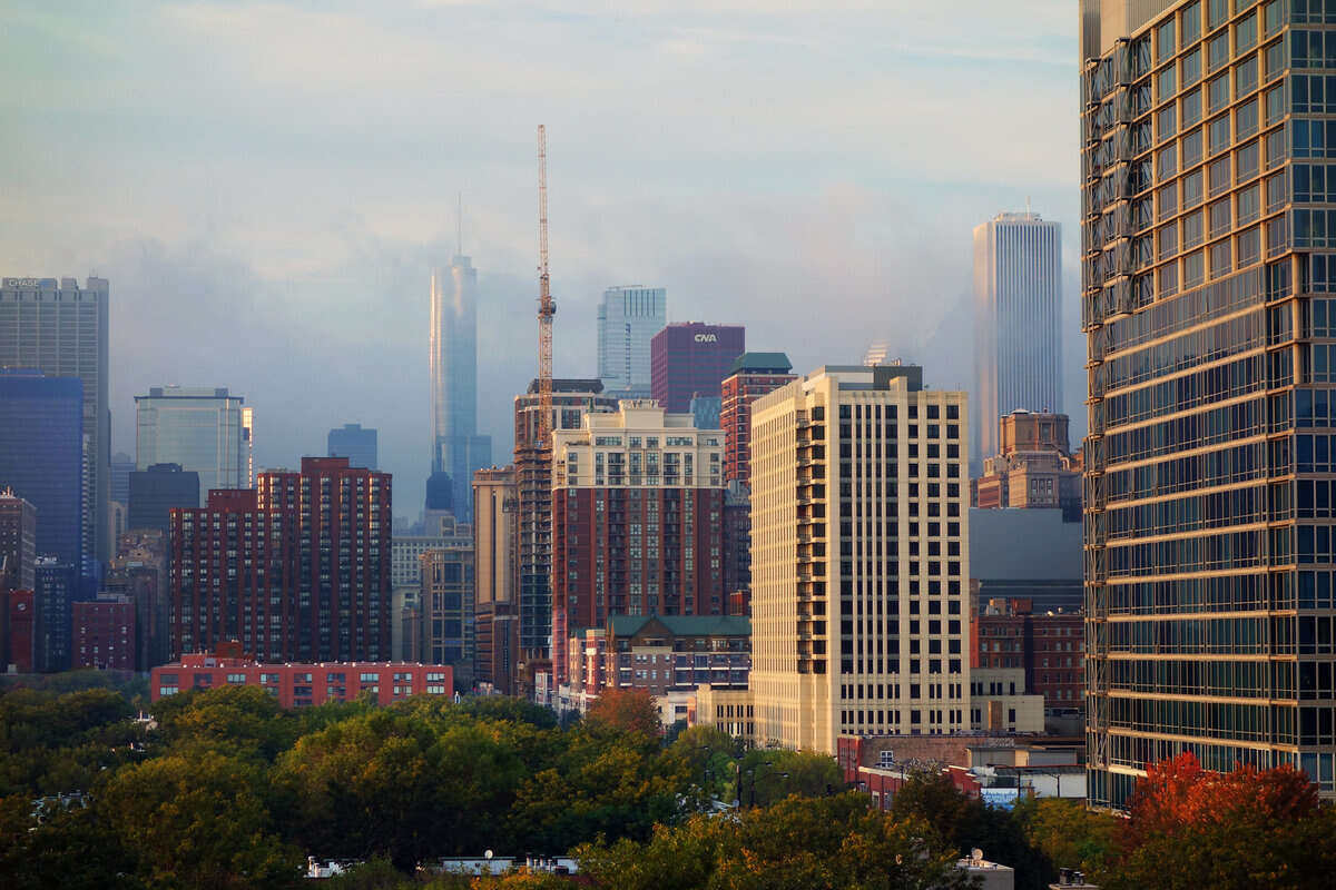 Downtown Chicago skyline with trees in the foreground