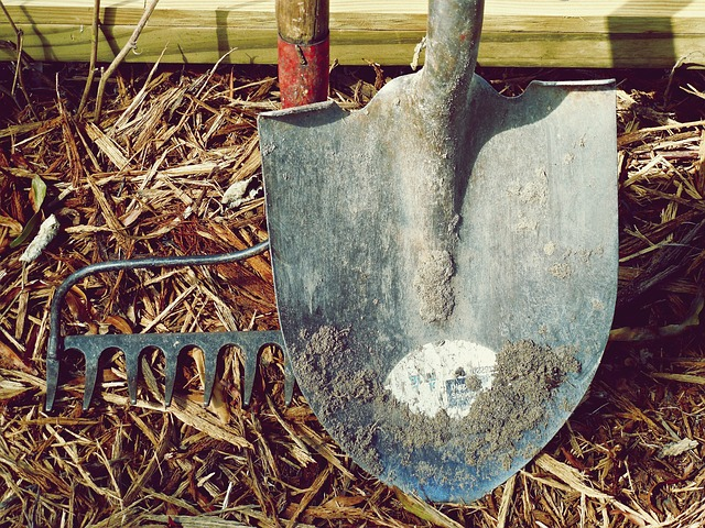 The Best Equipment for Starting a Lawn Care Business