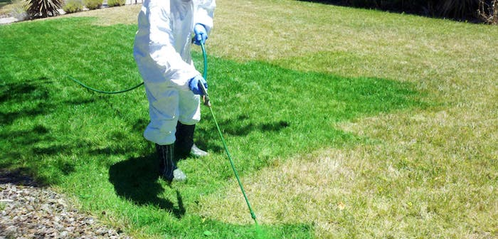 What is Lawn Spray Painting?