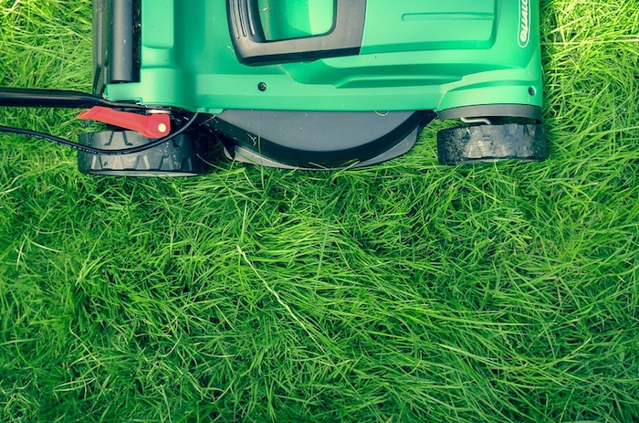 How to get your lawn nice and greener