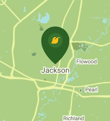 Jackson MS 39203