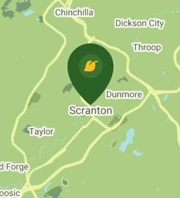 Scranton PA 18509