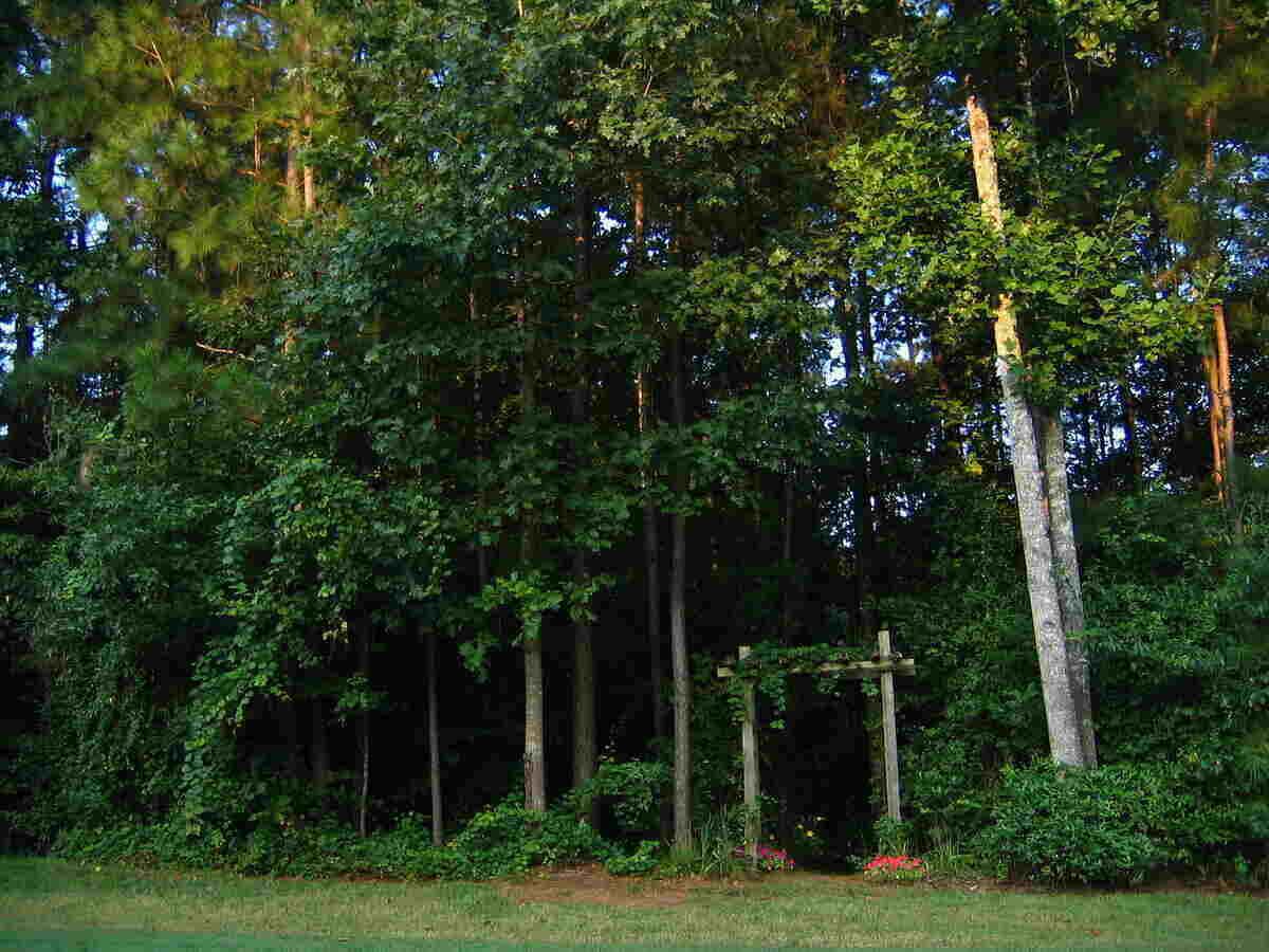 11 Low-Maintenance Landscaping Ideas for Atlanta