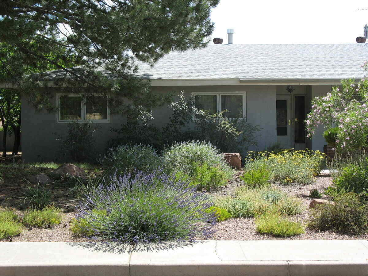 front house lawn with stone and drought-tolerant plants for xeriscaping