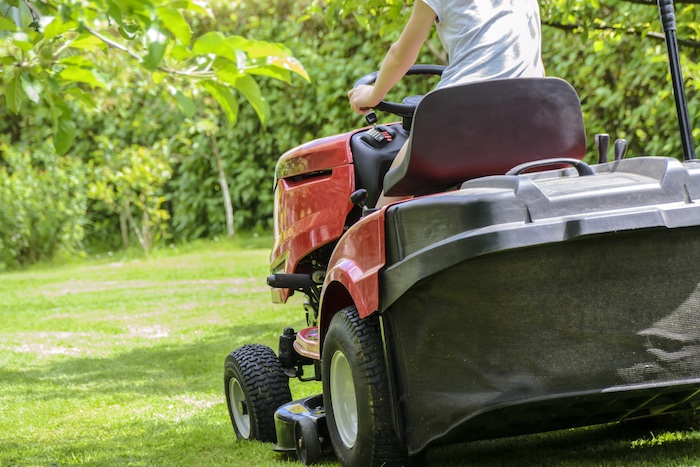 The Best Time to Cut Grass - Lawn Love