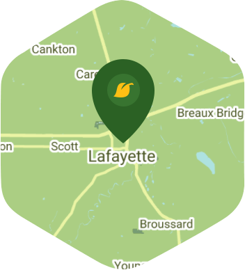 Lafayette LA 70501