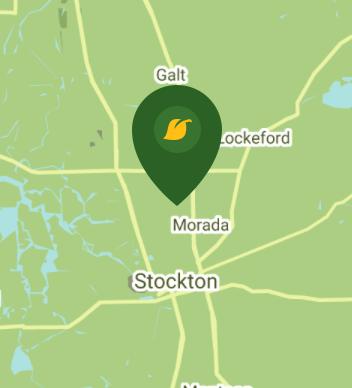 Stockton CA 95203