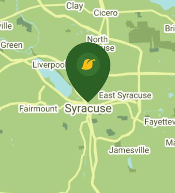 Syracuse NY 13202