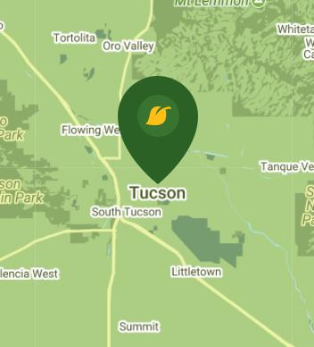 Tuscon AZ 85701