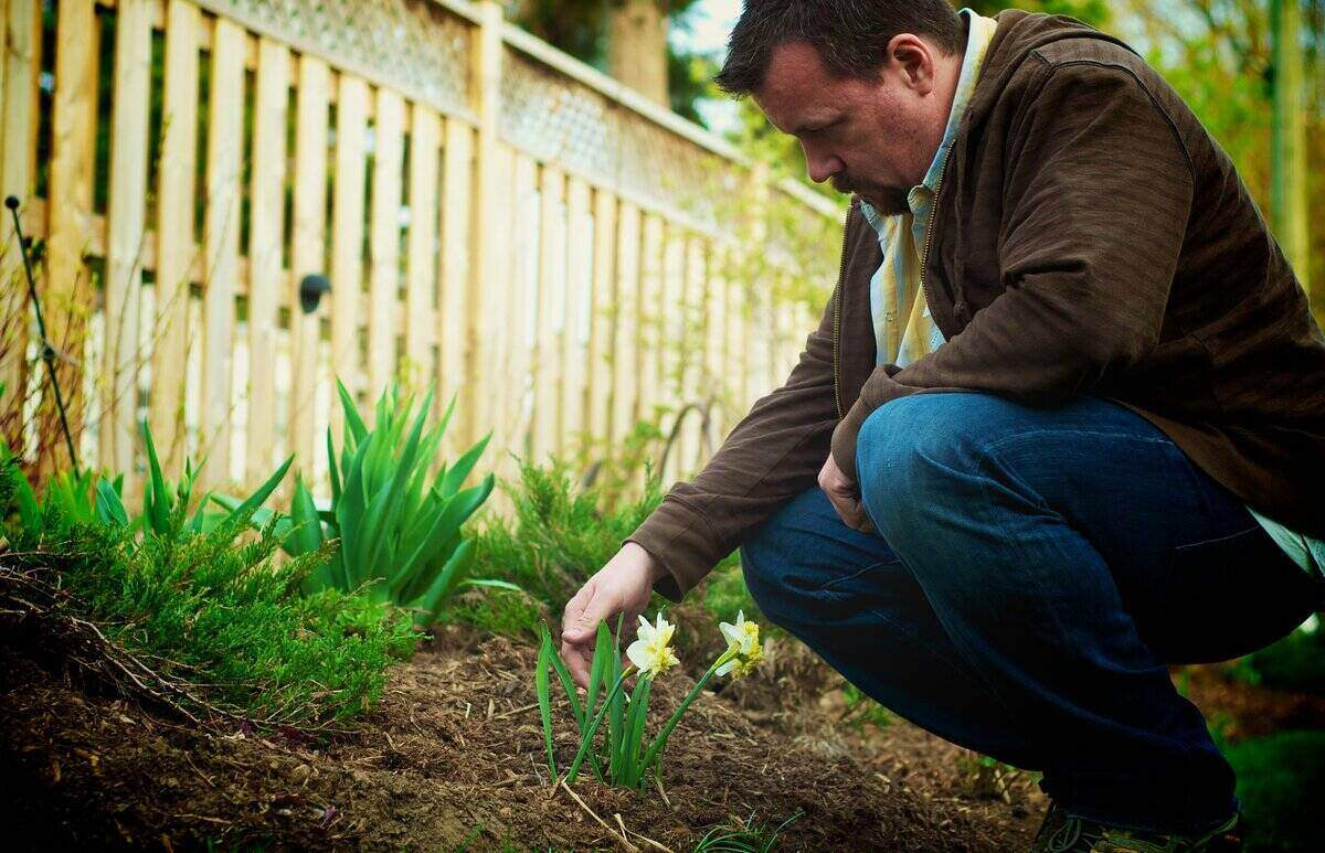 Man bent down next to a new spring blooming flower